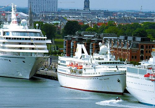 BDP Cruise